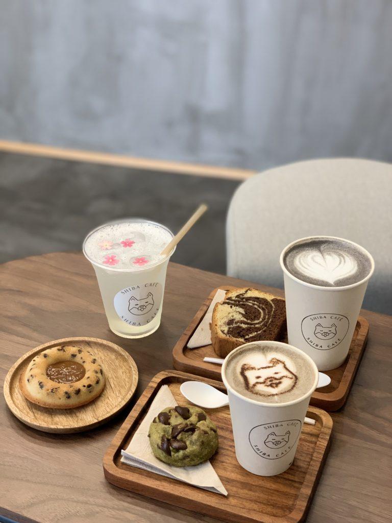 Boissons de shiba Café